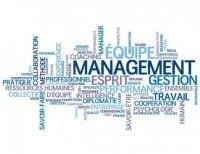 système de management